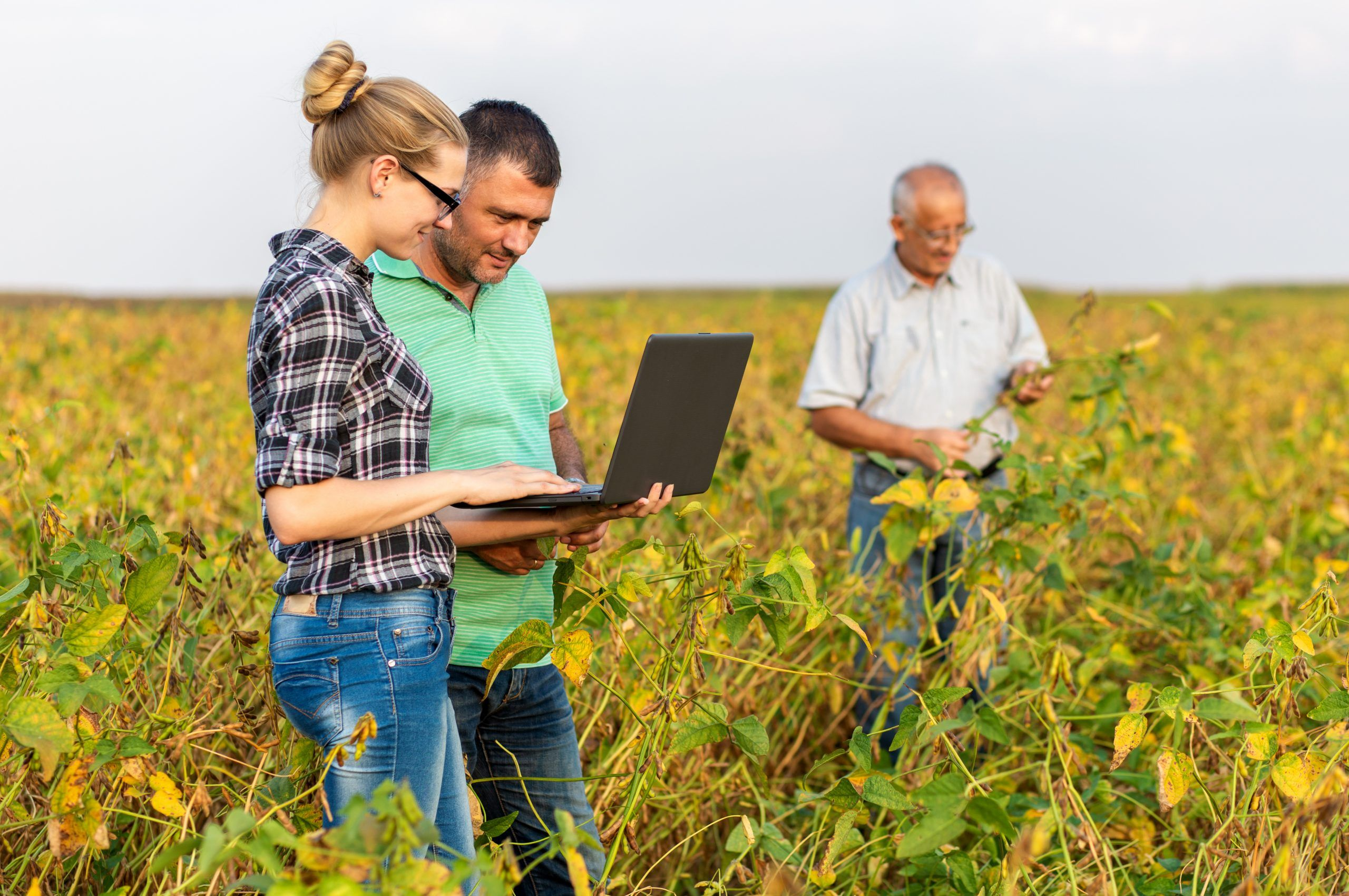 contrat apprentissage agroalimentaire